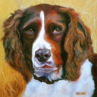 Spaniel Drawing - Springer Spaniel by Susan A Becker