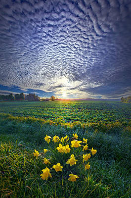 Hope Photograph - Springing To Life by Phil Koch
