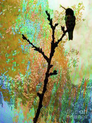 Photograph - Springs Palette by Robert Ball