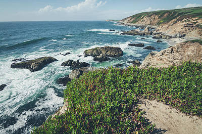 Photograph - Springtime At Bodega Head by Margaret Pitcher