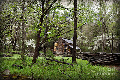 Photograph - Springtime At The Cabin by Eric Liller