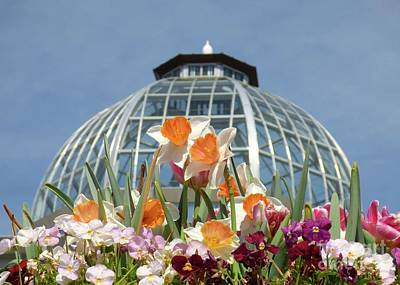 Photograph - Springtime At The Conservatory by Jean Wright