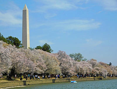 Photograph - Springtime At The Tidal Basin by Emmy Marie Vickers