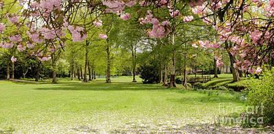 Springtime Bournville Park Original