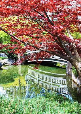 Photograph - Springtime Bridge by Carol Groenen