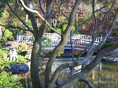Springtime Bridge Through Japanese Maple Tree Art Print