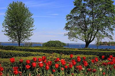 Photograph - Springtime By The Bay by Dora Sofia Caputo Photographic Art and Design