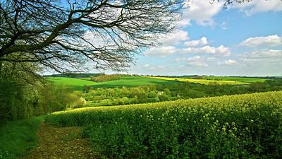 Photograph - Springtime Glory by Anne Kotan