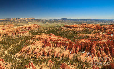 Photograph - Springtime In Bryce by Robert Bales