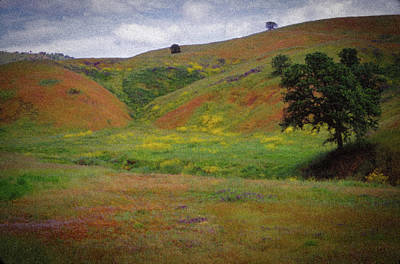 Photograph - Springtime In California Hills by Samuel M Purvis III