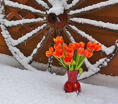 Photograph - Springtime In Colorado by Diane Alexander
