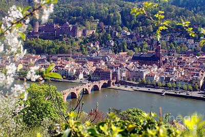Photograph - springtime in Heidelberg by Rudi Prott