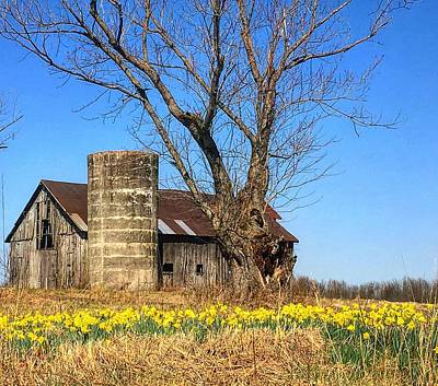 Photograph - Springtime In Kentucky by Sumoflam Photography