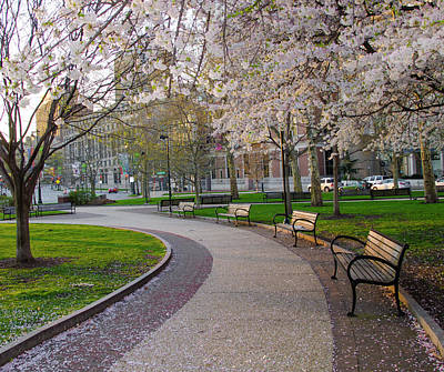 Photograph - Springtime In Philadelphia by Bill Cannon