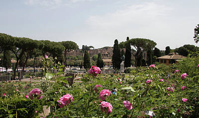 springtime in Rome Palatino from rose garden 1 Art Print