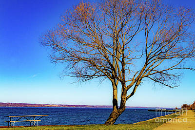 Revolutionary War Art - Springtime in the Finger Lakes by William Norton
