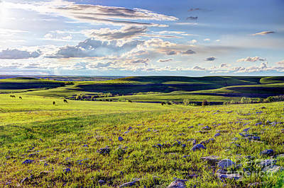 Photograph - Springtime In The Flint Hills by Jean Hutchison