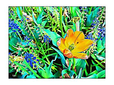 Photograph - Springtime In The Garden by Tatiana Travelways