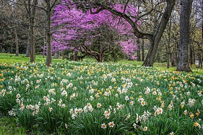 Photograph - Springtime In The Morton Arboratum by Judith Barath