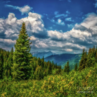 Springtime In The Rockies Art Print by Jon Burch Photography