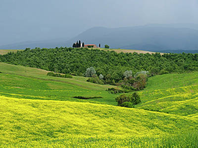 Photograph - Springtime In Tuscany by Dennis Cox WorldViews