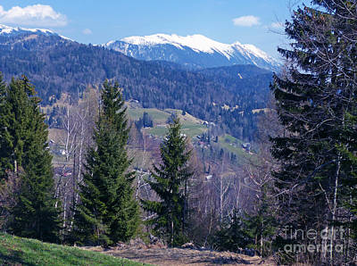 Photograph - Springtime Near Jesenice - Slovenia by Phil Banks