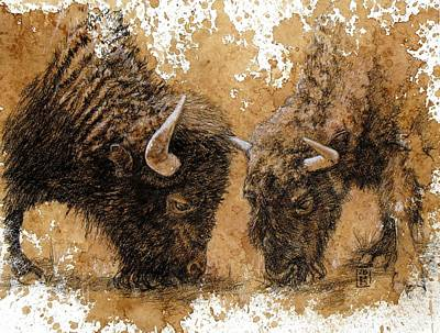 Bison Drawing - Springtime Nosh by Debra Jones