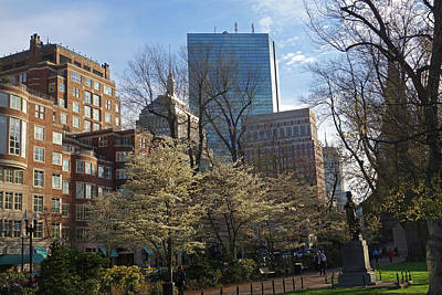 Photograph - Springtime On Boston Public Garden Boston Ma by Toby McGuire