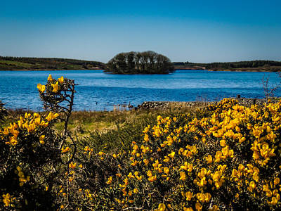 Photograph - Springtime On Lake Knockalough by James Truett