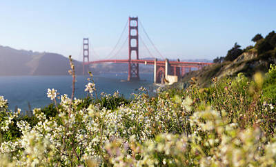 Art Print featuring the photograph Springtime On The Bay by Everet Regal