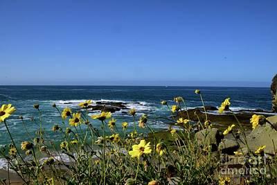 Photograph - Springtime On The Coast by Johanne Peale