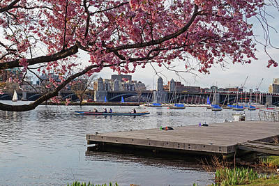 Photograph - Springtime On The Esplanade Boston Ma Longfellow Bridge Rowers by Toby McGuire