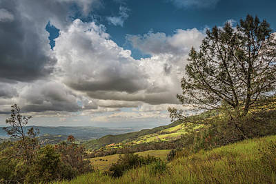 Photograph - Springtime On The Mountain by Laura Macky