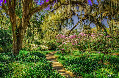 Photograph - Springtime Path by Ed Roberts