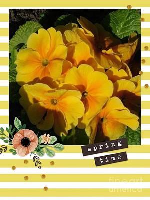 Photograph - Springtime Primroses by Joan-Violet Stretch