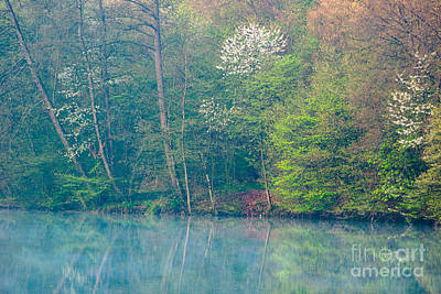 Photograph - Springtime Reflection by Alexander Kunz