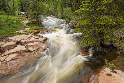 Photograph - Springtime Rocky Mountain Stream Left Hand by James BO  Insogna