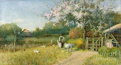 Ducks Painting - Springtime by Sir Alfred East