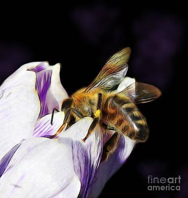 Manipulation Photograph - Springtime Visitor by Jutta Maria Pusl