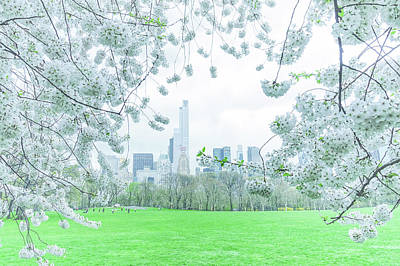 Spring Nyc Photograph - Springtime by Vivienne Gucwa