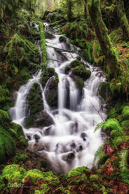 Photograph - Springtime Waterfall by Charlie Duncan