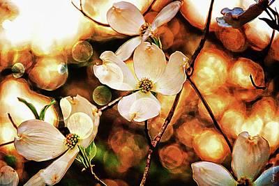 Photograph - Springtime by Wesley Nesbitt