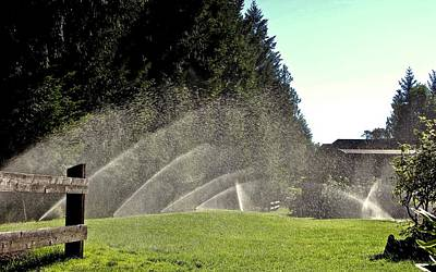 Photograph - Sprinklers by Brian Sereda