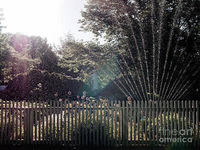 Pink Black Tree Rainbow Photograph - Sprinklers by Rachel Morrison