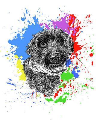 Digital Art - Sproodle by ZileArt