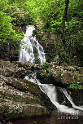 Photograph - Spruce Flats Falls - D009919 by Daniel Dempster