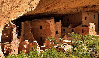 Pueblo Architecture Photograph - Spruce Tree House View by Jim Chamberlain
