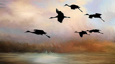 Photograph - Squadron Of Sandhill Cranes, Bosque Del Apache, New Mexico by Flying Z Photography by Zayne Diamond