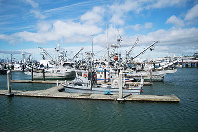Photograph - Squalicum Mrina Fishing Fleet by Tom Cochran