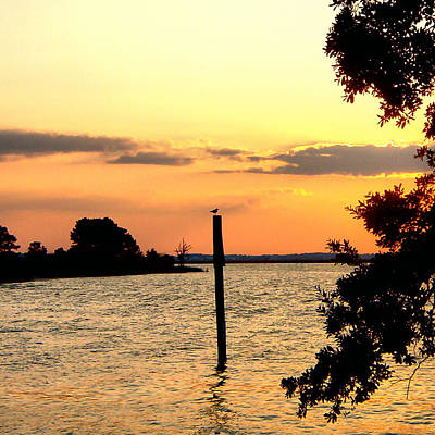 Photograph - Square Cedar Point Sunset by Kathy K McClellan